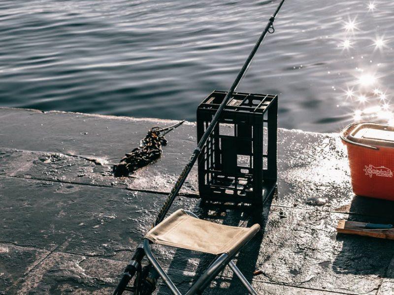 Débuter la pêche au silure, nos conseils